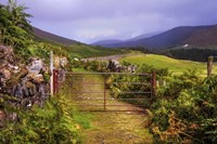 Gates on the Road at Wicklow Hills Ireland Fine-Art Print