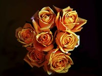 Bouquet Of Yellow Roses Fine-Art Print