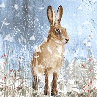 Winter Hare Fine-Art Print