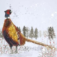 Christmas Pheasant Fine-Art Print