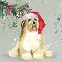 Dog In Christmas Hat Fine-Art Print
