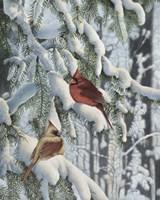 Winter Visitors Fine-Art Print
