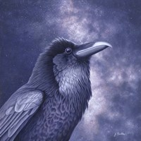 Raven Air Fine-Art Print