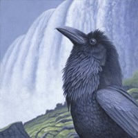 Raven Water Fine-Art Print