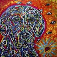 Color Dog Fine-Art Print