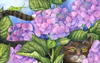 Cat in the Hydrangeas Fine-Art Print