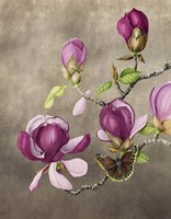 Magnolia and Butterfly Fine-Art Print