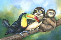 Toucan Owl Sloth Fine-Art Print