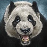 Panda Face Fine-Art Print