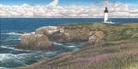 Yaquina Head Lighthouse Fine-Art Print