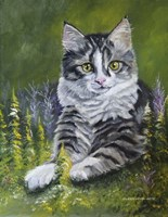 Bandit The Cat Fine-Art Print