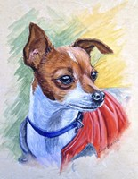 Chihuahua With Red Coat Fine-Art Print