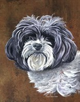 Daisy The Dog Fine-Art Print