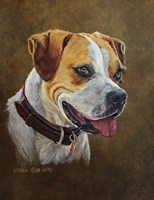 Dog 1 Buddy Boxer Fine-Art Print
