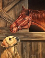 Labrador Retriever And Horse Barn Fine-Art Print