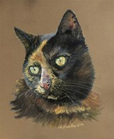 Normy The Cat Fine-Art Print