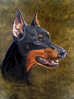 Shatzi The Doberman Fine-Art Print