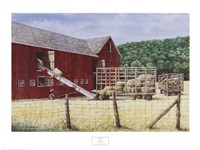 Hay Day Fine-Art Print