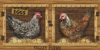 Chicken House Fine-Art Print