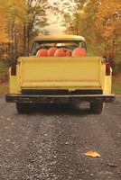 Yellow Pumpkin Hauler Fine-Art Print