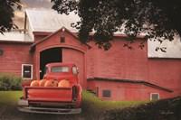 Red Pumpkin Truck Fine-Art Print