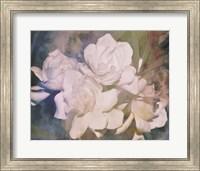 Blush Gardenia Beauty I Fine-Art Print