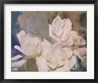 Blush Gardenia Beauty II Fine-Art Print