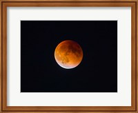 Blood Moon In Seattle Fine-Art Print