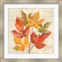 November Leaves IV Fine-Art Print