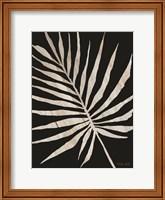 Palm Frond Wood Grain IV Fine-Art Print