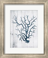 Coral White Wood Fine-Art Print