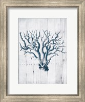 Coral White Wood Mate Fine-Art Print
