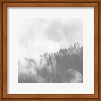 Misty Jungle Fine-Art Print