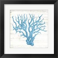 Coral On Wood Mate Fine-Art Print