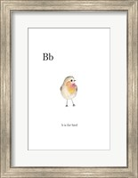 Bb Is For Bird Fine-Art Print