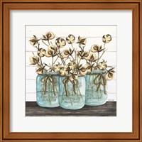 Blue Jars - Cotton Stems Fine-Art Print