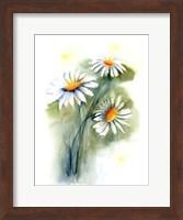 Daisies Fine-Art Print
