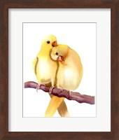 Yellow Parakeets Fine-Art Print