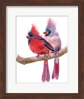 Cardinal Couple Fine-Art Print
