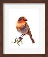 Sunset Bird Fine-Art Print