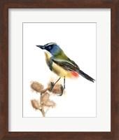 Green Bird Fine-Art Print