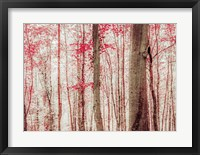 Pink & Brown Fantasy Forest Fine-Art Print