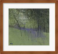 Bluebells Fine-Art Print