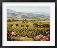 Vineyards to Vaca Mountains Fine-Art Print