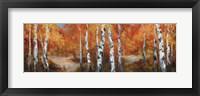 Autumn Birch II Fine-Art Print