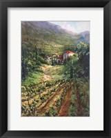 Tuscany Vineyard Fine-Art Print