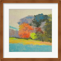 Fox Farm Woods Fine-Art Print