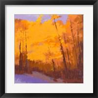 Orange to the Edge Fine-Art Print
