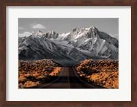 The Road 1 Fine-Art Print