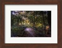 Beyond the Wooden Bridge Fine-Art Print